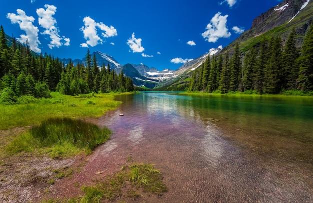 Uitzicht op glacier national park, pijnbomen naast een rivier in de winter in rocky mountains