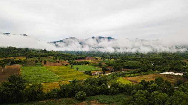 Uitzicht op groen veld tegen berg en blauwe hemel met cloud