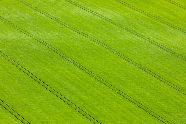 Uitzicht op groene schotse velden met tarwe en gerst van bovenaf
