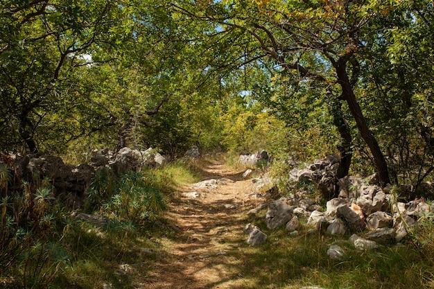 Uitzicht op het pad op het schilderachtige kroatische platteland