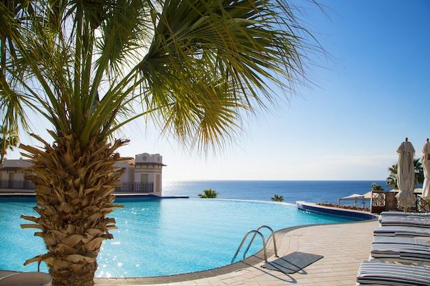 Uitzicht op het prachtige zwembad met palmbomen.