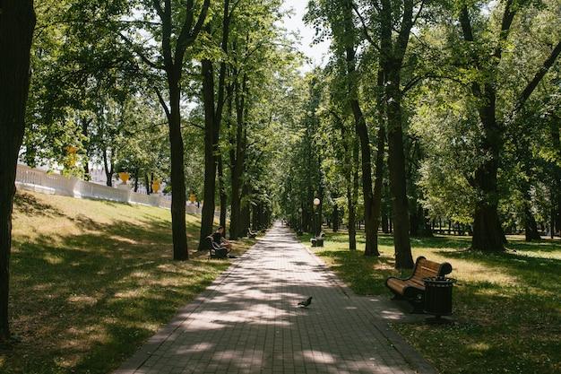 Uitzicht op het voetpad in het park