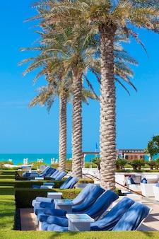 Uitzicht op ligstoelen en palmbomen
