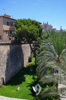 Uitzicht op palma de mallorca waar veel groene bomen en struiken vertegenwoordigd zijn
