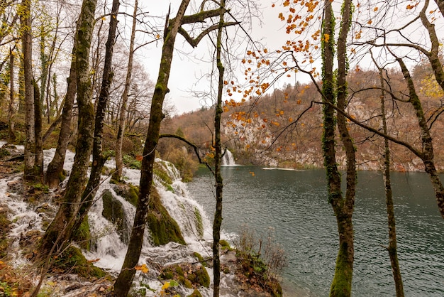 Uitzicht op watervallen in het nationaal park plitvicemeren in kroatië
