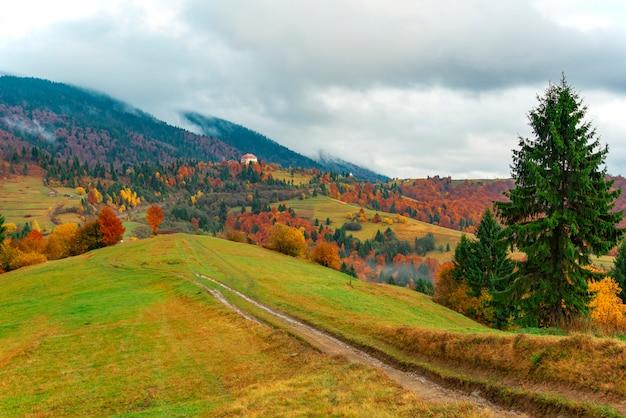 Uitzicht op weelderige kleurrijke vallei met weg en bomen. montage pad op heuvel weide met blauwe lucht op de achtergrond. concept van natuurschoonheid.