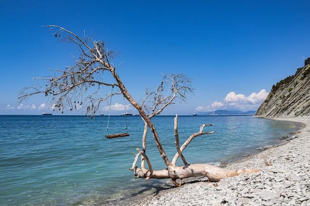 Uitzicht op zee, rotsen, stenen strand met schommels aan een omgevallen boom en vrachtschepen. zelfgemaakte zeeschommels op een wild strand vermaken toeristen.