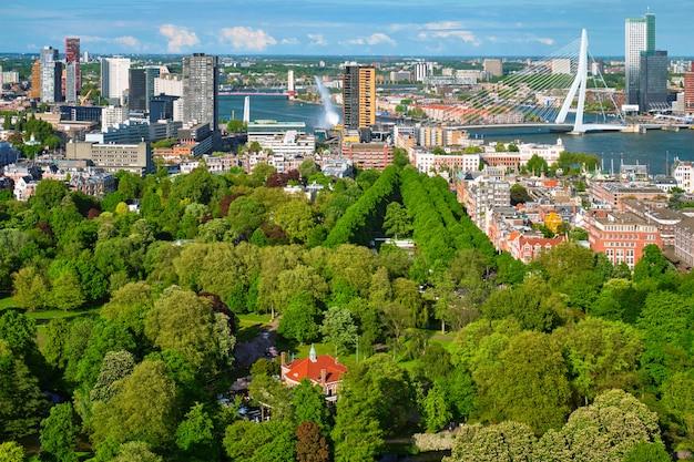 Uitzicht over rotterdam stad en de erasmusbrug
