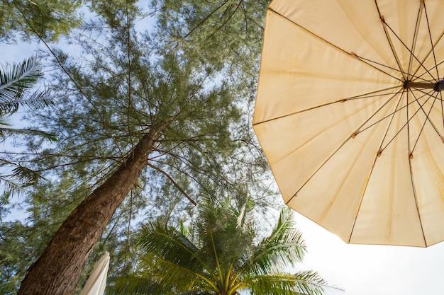 Uitzicht van onder van een parasol