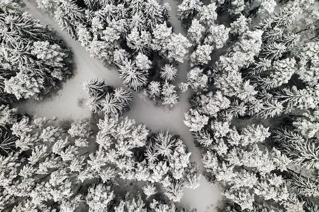 Uitzicht vanaf de hoogte van het winterbos met in de winter besneeuwde bomen.