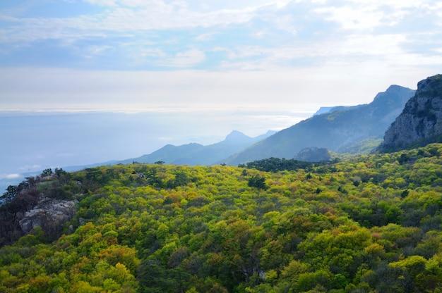 Uitzicht vanaf de top van de berg ai-petri