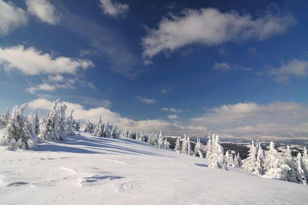 Uitzicht vanaf de top van een hoge berg naar een met sneeuw bedekt naaldbos. winterlandschap, noordelijk klimaat