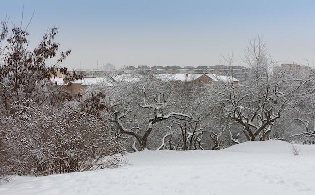 Uitzicht vanaf het besneeuwde stadspark op de daken van huizen, wintertijd in de stad