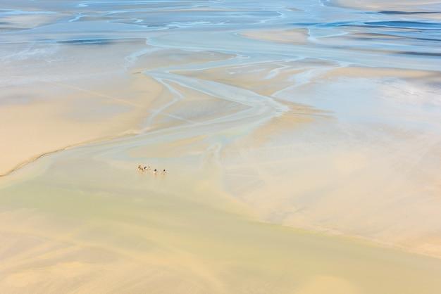 Uitzicht vanaf muren van mont saint michel op de baai tijdens eb met groepen toeristen lopen. frankrijk