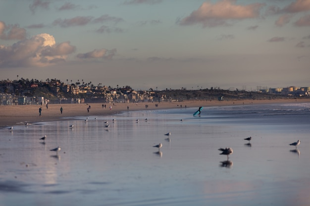 Uitzicht vanaf santa monica strand in los angeles, californië