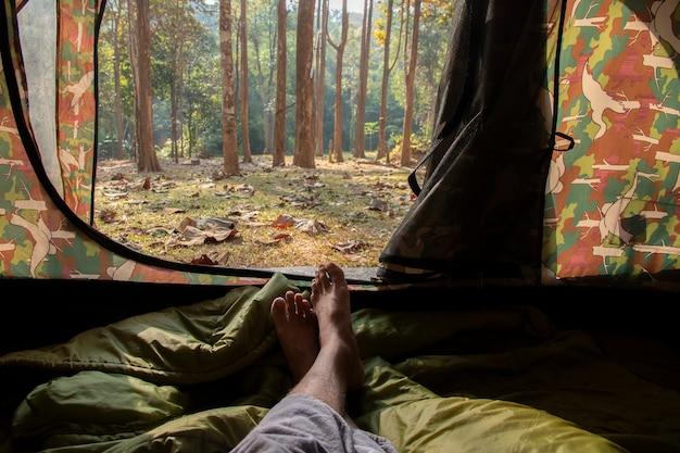 Uitzicht vanaf toeristische tent in het bos.