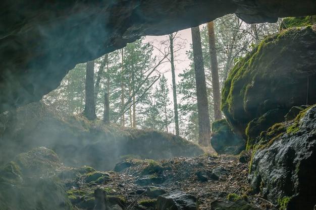Uitzicht vanuit de grot naar het mistige bos
