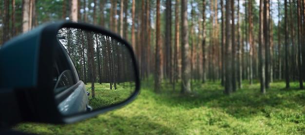 Uitzicht vanuit het autoraam in het bos. selectieve aandacht.