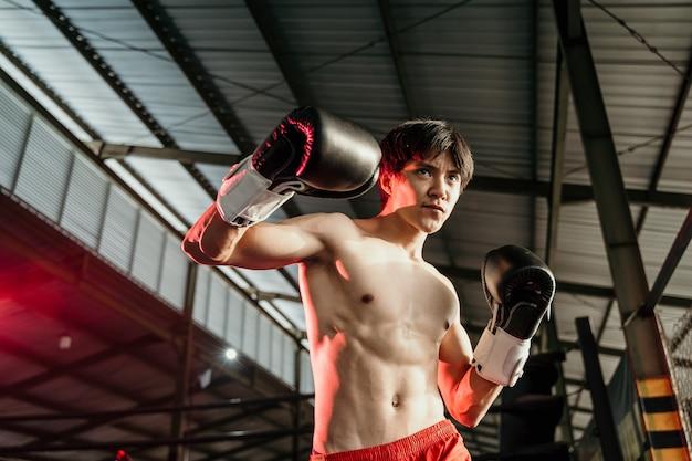 Ultieme vechter in bokshandschoenen klaar om naast copyspace op de ringarena te slaan