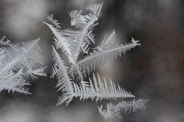 Unieke ijspatronen op vensterglas