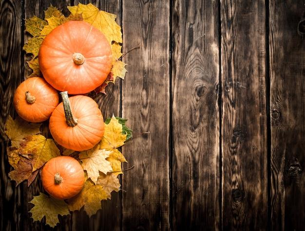 Utumn oogst pompoen met herfstbladeren op een houten tafel