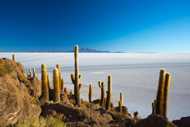 Uyuni-zoutvlakte op de boliviaanse andes bij zonsopgang