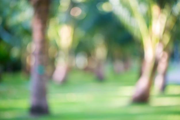 Vaag park met het onduidelijke beeldachtergrond van de bokeh lichte aard.