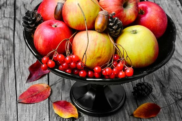 Vaas met appels en rowan