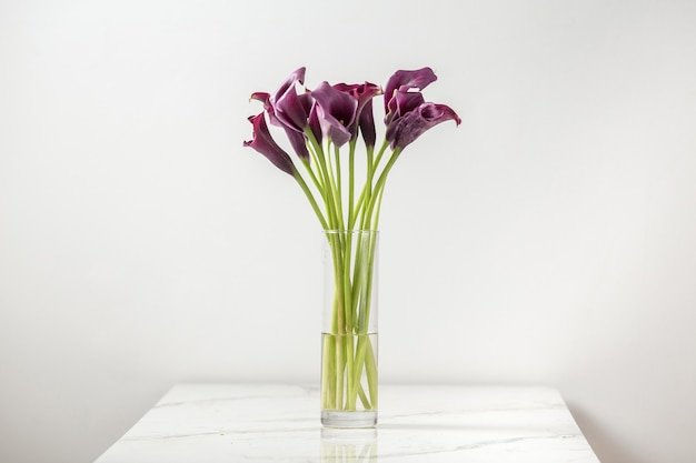 Vaas met boeket verse paarse calla bloemen