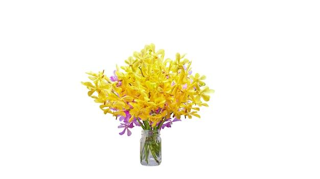 Vaas van gele en purpere orchideebloem die op witte achtergrond met het knippen van masker wordt geïsoleerd