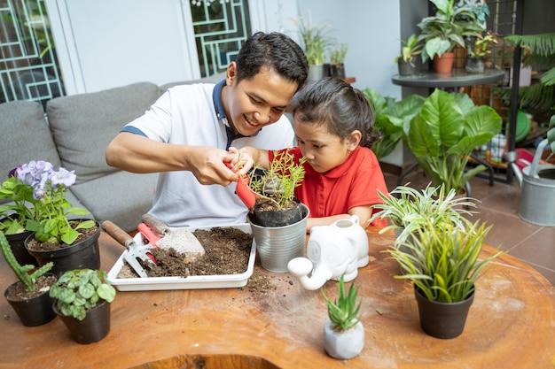 Vader en zijn dochters planten potplanten