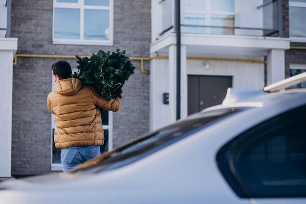 Vader met kerstboom thuis