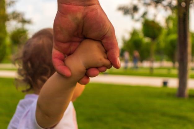 Vaders hand leidde zijn kindzoon in de zomerbosnatuur buiten, vertrouw op familieconcept