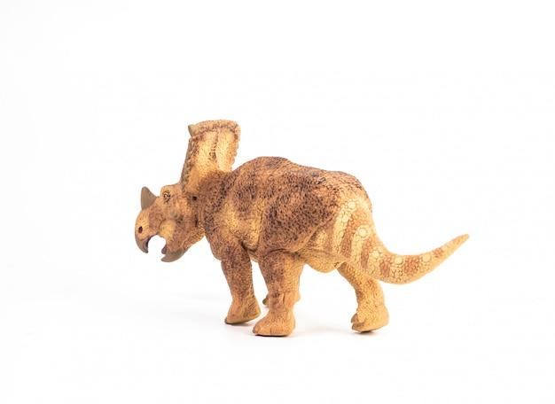 Vagaceratops triceratops dinosaur