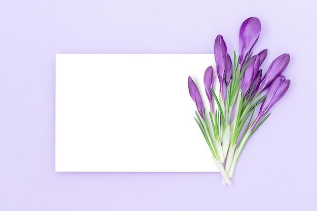 Vakantie achtergrond met geïsoleerde witte middendeel omgeven door paarse achtergrond