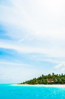 Vakantie boom vakantie malediven