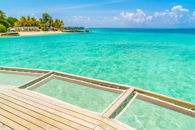 Vakantie netto zetel in het tropische eiland van de maldiven en schoonheid van het overzees met de koraalriffen.