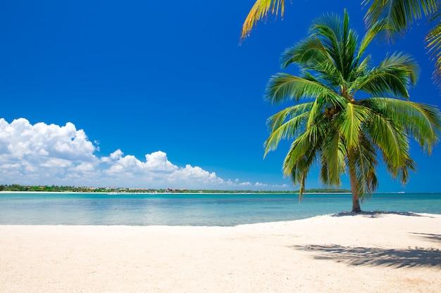 Vakantie op de malediven, prachtige foto van het paradijsstrand op de malediven