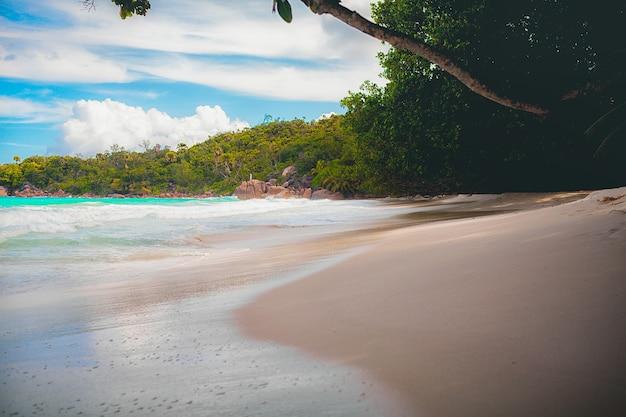 Vakantie zomervakantie achtergrond behang zonnig tropisch exotisch caribisch paradijs strand met w