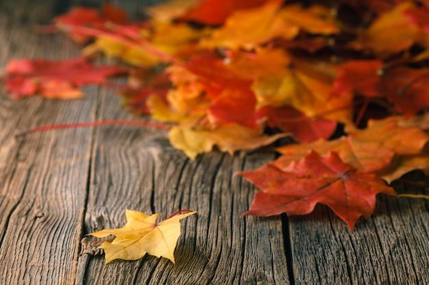 Val achtergrond met esdoorn bladeren op houten tafel