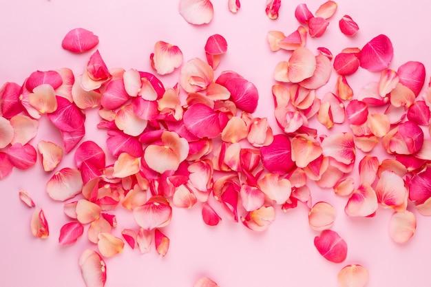 Valentijnsdag. rose bloemen bloemblaadjes op witte achtergrond. valentijnsdag achtergrond. plat leggen, bovenaanzicht, kopie ruimte.