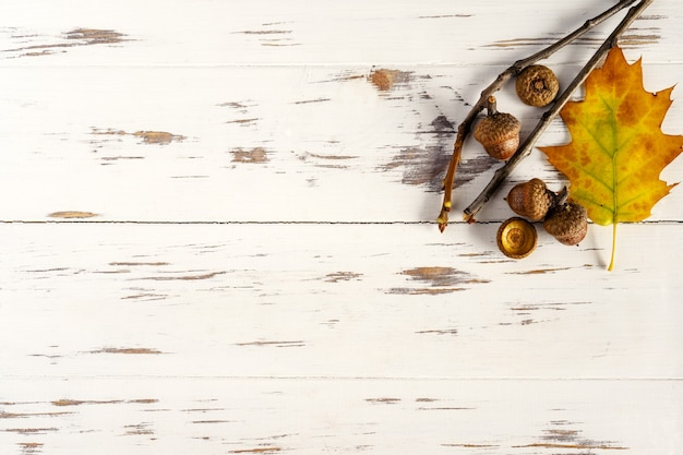 Vallen. gekleurde gevallen bladeren, eikels op een houten witte achtergrond, lay-out, kopie ruimte