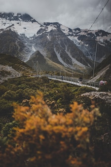 Valley track met uitzicht op mount cook in nieuw-zeeland