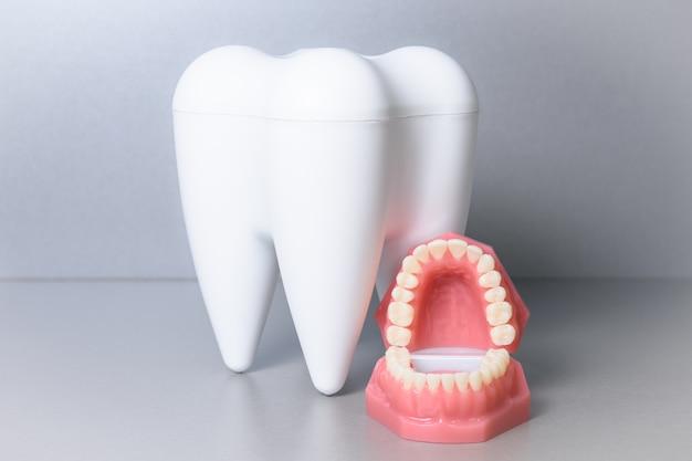 Valse mond met grote tand
