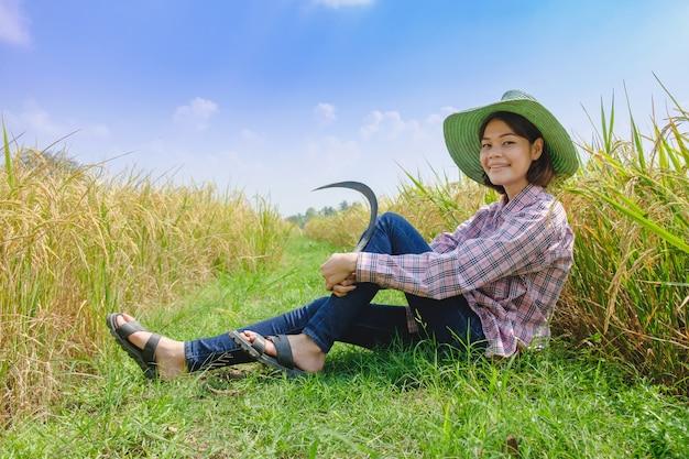 Van de de landbouwersvrouw van het portretglimlach de hoedenzitting met mooi padieveld in padieveld thailand.