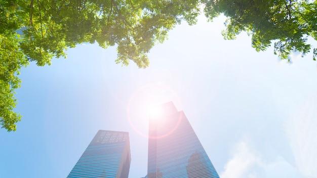 Van het patroon moderne glas moderne muur van het perspectief de externe moderne gebouwen met groene boombladeren.