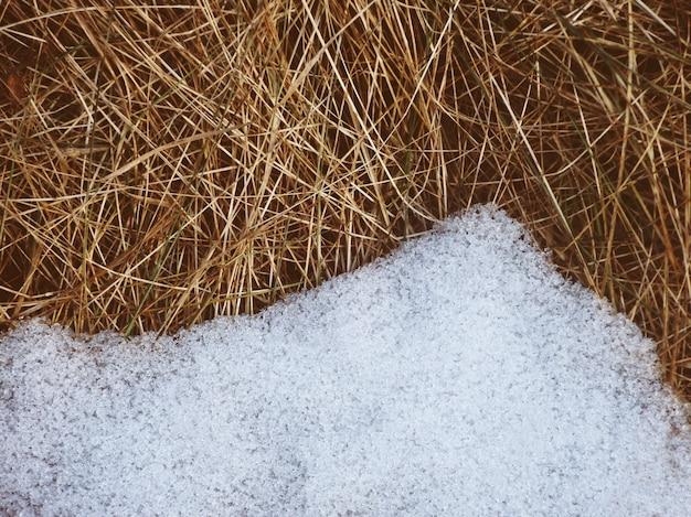 Van verse sneeuw smelt op droog gras