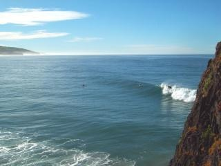 Vangst die wave - st clair, dunedin