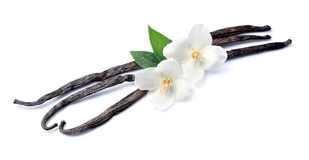 Vanillestokjes met bloemen op wit.