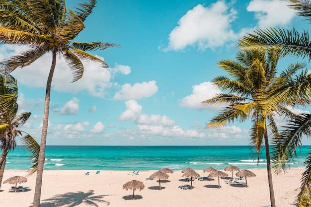 Varadero op een zonnige dag. mooie vakantie. mooi strand met strandstoelen, rieten parasols en palmbomen. luxe strand tegen de achtergrond van de schoonheid van de zee met koraalriffen. retro stijl